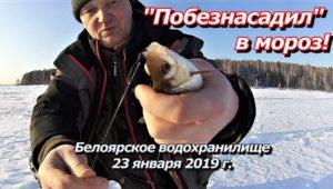 """""""Побезнасадил"""" в мороз — ПашАсУралмашА"""