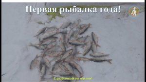 Первая рыбалка года! - С рыбалкой по жизни!