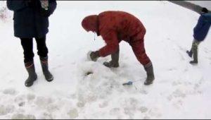 Орловское полесье - Рыбачим сами
