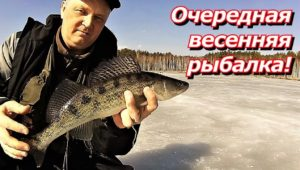 Очередная весенняя рыбалка — ПашАсУралмашА