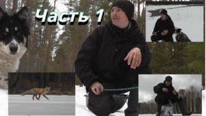 Последний лед на озере Круглом. Часть 1 - Болен рыбалкой
