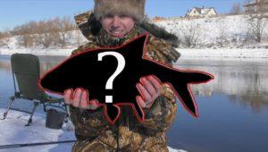 Рыбалка на фидер зимой - Рыбалка с Пашком