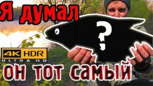 Майский фидер на реке - Рыбалка с Пашком