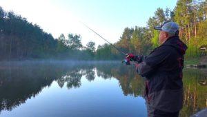 Щука на лесном озере - Клуб рыбаков