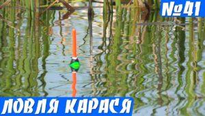 Ловля карася на красивом озере в мае
