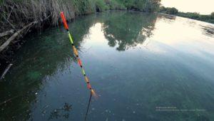 На деревенском пруду - Рыбалка 68
