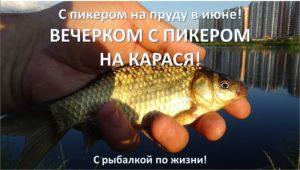 Вечерний карась - С рыбалкой по жизни!