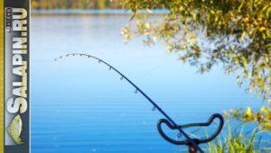 Как правильно ставить фидер на рыбалке - Салапин