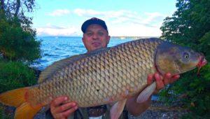 Ловля сазана на Днепре — Клуб рыбаков