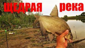 Рыбалка на Черных камнях - Дневник рыболова