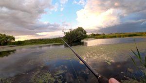 Рыбалка на красивой заросшей речке - Рыбалка 68