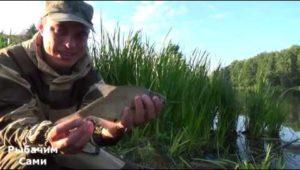 Рыбалка на реке Пехорка в Балашихе - Рыбачим сами