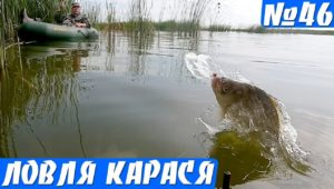 Утренняя ловля карася на озере