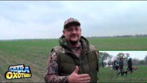 Борзые. Испытания по зайцу - Приключения рыбака и охотника