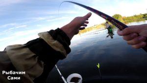 Карп на Кудиновском карьере - Рыбачим сами