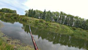 Ловля щуки летом на спиннинг - Рыбалка 68