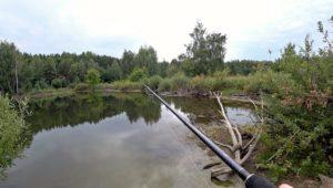 Рыбалка на спиннинг в пасмурную погоду - Рыбалка 68