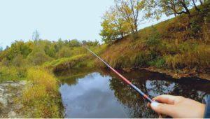 Лесная микро-речка и Клязьма осенью