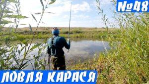 Ловля карасей в болоте осенью