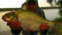 Судак и лещ на фидер - Рыбалка с Пашком