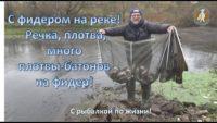 Много плотвы на фидер — С рыбалкой по жизни!