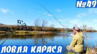 Октябрьский карась на поплавок — Рыбалка на реке