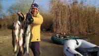 Кукан не выдержал эту рыбалку - Туристории