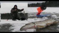 Лесными тропами за щукой - Болен рыбалкой