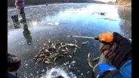 Ловля ротана по первому льду - Рыбалка 62