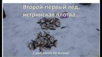 Истринская плотва — С рыбалкой по жизни!