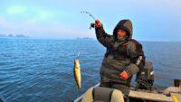 В поисках рыбы зимой - Клуб рыбаков