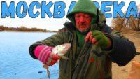 Зимняя плотва и подлещик на Москве-реке - Рыбалка с Пашком