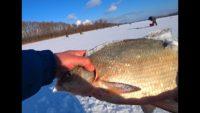 Ловля леща зимой - Рыбалка 62