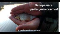 Четыре часа рыбацкого счастья — С рыбалкой по жизни!