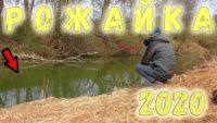Старая и новая Рожайка - Рыбалка с Пашком