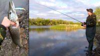Ловля щуки в мае на спиннинг с берега — Рыбалка на реке