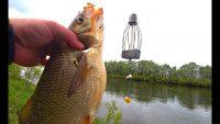 Спортивная рыбалка - Рыбалка 62
