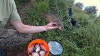 Когда спиннинг молчит, на фидер ловится - Рыбалка 68