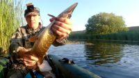 Рыбалка на щуку ранним утром — Рыбалка на реке