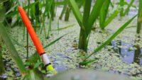 Идеальный поплавок из гусиного пера своими руками - Самодельная рыбалка