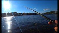 Спиннинг с берега на Оке - Рыбалка 62