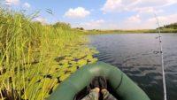 Вот так ловится щука в июльскую жару — Рыбалка на реке