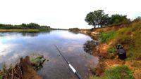 Где искать щуку в сентябре на реке?