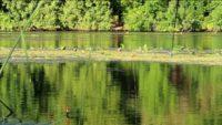 Три уловистых рецепта каши на рыбалку - Самодельная рыбалка