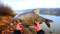 Эту рыбалку я запомню на всю жизнь - Рыбалка с Пашком