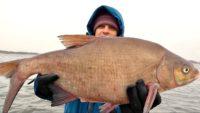 Ловля на фидер поздней осенью — Клуб рыбаков