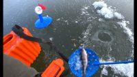 Первый лёд 2020-2021 - Рыбалка 62