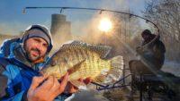 Экстремальный фидер - Рыболовный дневник