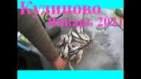 Январский отчет о рыбалке в Кудиново - Мир мужчин