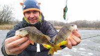Зимняя ловля окуня на заливах реки Псёл - Туристории
